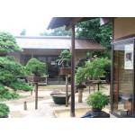 Morimae's garden