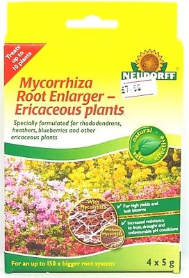 ERICACEOUS MYCORRHIZA